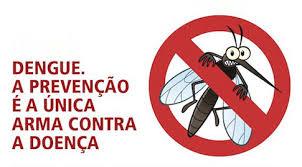 Vírus da Dengue